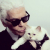 カール・ラガーフェルドは猫に資産相続。若い頃はイケメン!(画像)